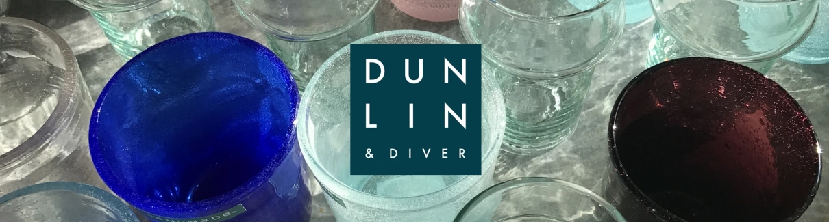 Dunlin & Diver