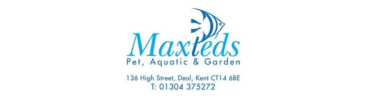 maxteds offer